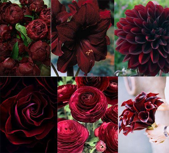 Flower Friday: Pantone Marsala Inspiration   utahbrideblog.com