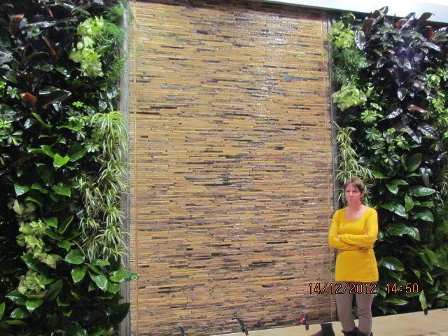 Van egy kihasználatlan falfelület otthonában, irodájában, és falfestés vagy a megszokott képek helyett valami egyedivel dekorálná? Valósítsa meg az örökzöld szépséget falain is függőleges kertek segítségével egyszerűen, stílusosan, és egészségesen! http://www.globalgarden.hu/szolgaltatasaink/fuggoleges-kertek-zold-falak/