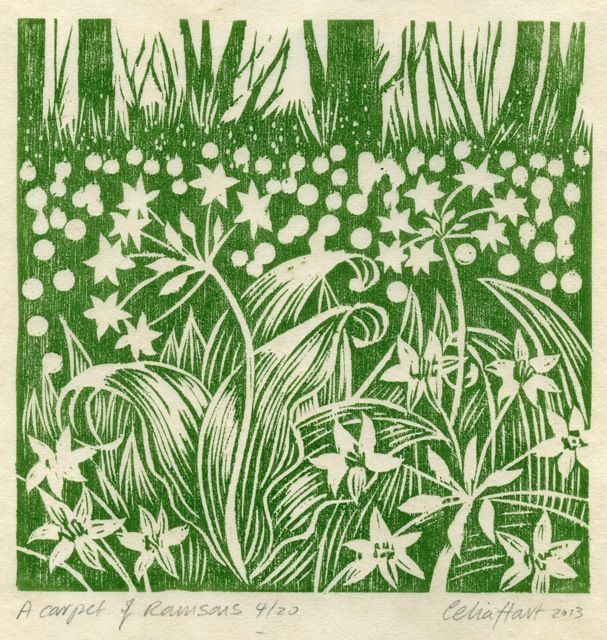 'A carpet of Ramsons' by Celia Hart (linocut)