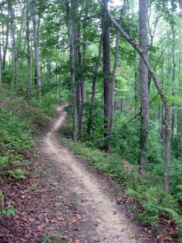 Tsali Recreation Area offers great biking trails.