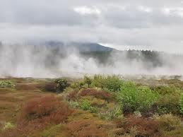 Wairakei Geothermal Steam Field