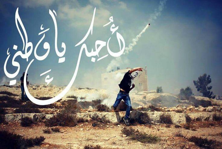 I Love Palestine أحبك يا فلسطين Neon Signs Palestine Wonder