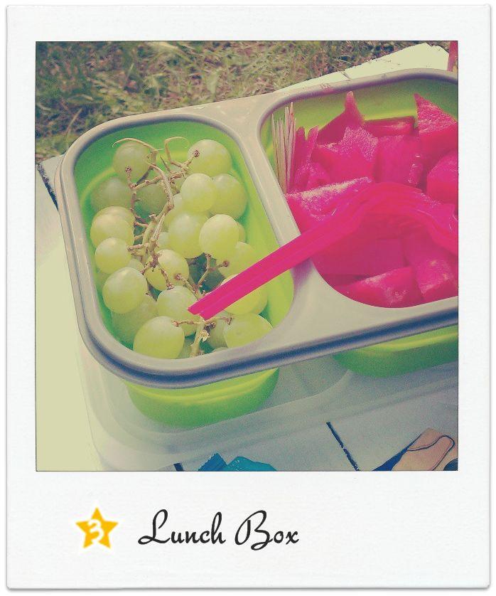Carma Line Lunch Box