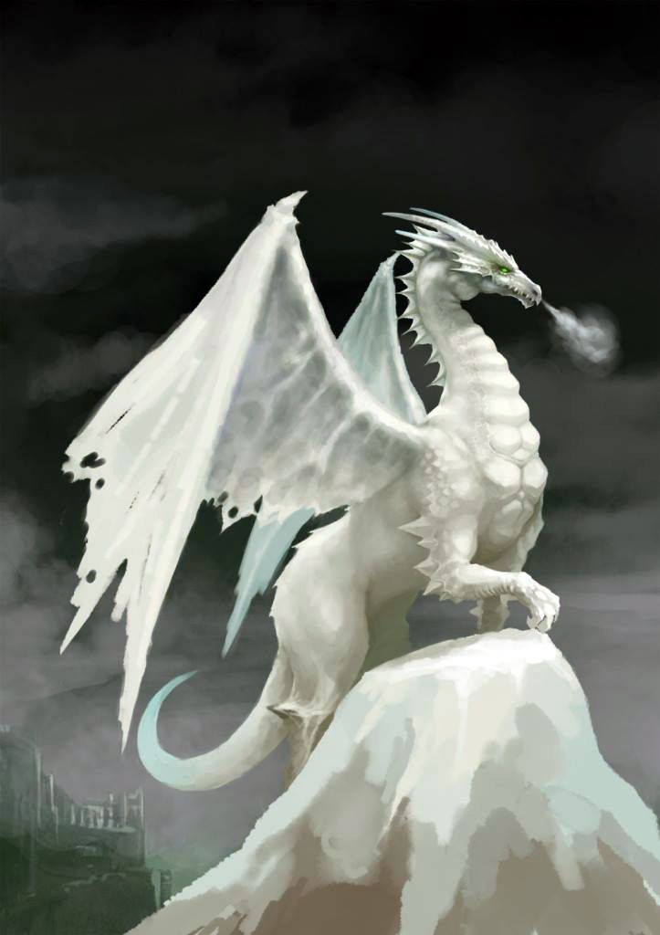Snow White Dragon Fantasy Myth Mythical Mystical Legend Dragons Wings Sword Sorcery Art Magic