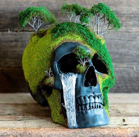 Memento Mori – Des bonsaïs et des crânes humains pour célébrer la vie et la mort