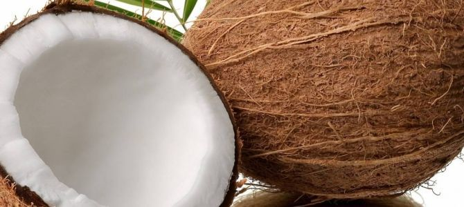 Essay about coconut oil