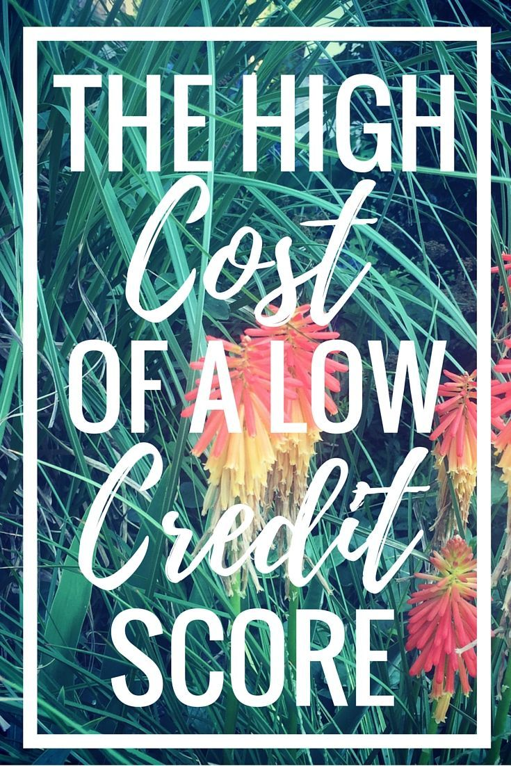 Did you know how much a low credit score can cost you? Here's everything to know to get back on track! | Cashville Skyline