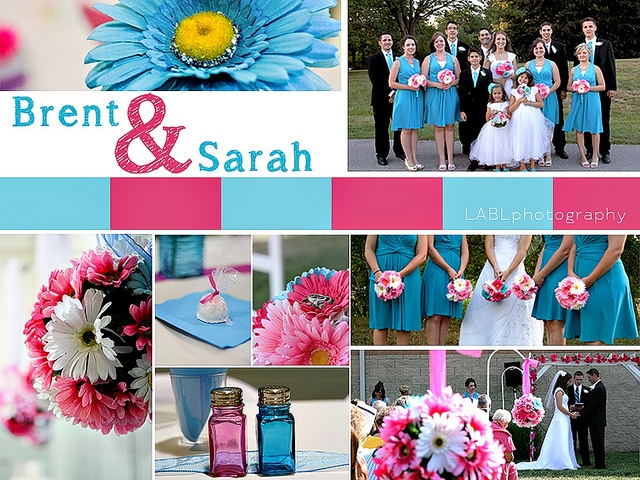 Pink And Turquoise Wedding Teal Hot Gerber Daisey Daisies