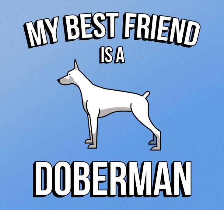 Sticker Doberman is je vriend  De sticker heeft een plaatje van een wit met grijze doberman hond en daarbij de engelse tekst My bestfriend is a Doberman. Wat betekent dat een doberman hond je aller beste vriend is! Is een hond ook jou beste vriend? en is dat toevalig een doberman? Plak dan deze sticker in je woonkamer of op je auto of zelfs op je honden hok! En laat iedereen zien wie je beste vriend in de wereld is.Bij de productie van alle stickers binnen Tenstickers wordt gebruik gemaakt…
