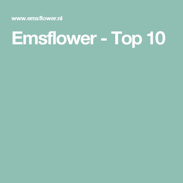 Emsflower - Top 10