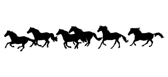 Horse herd silhouette