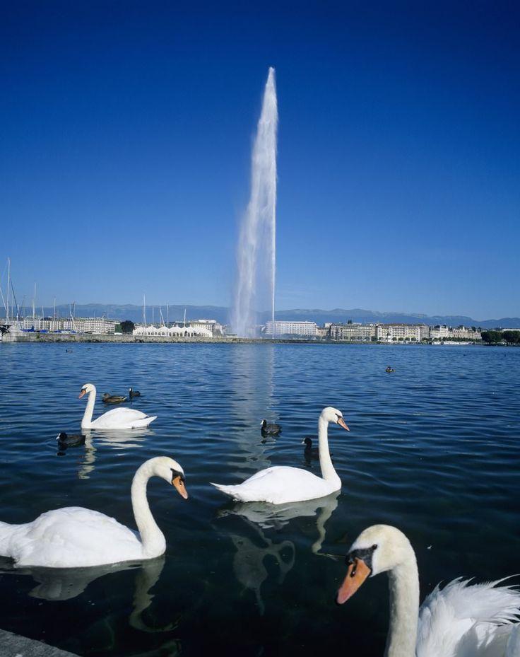 Switzerland, Geneva image gallery - Lonely Planet