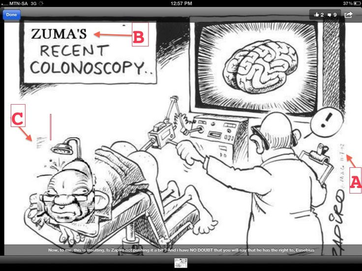 www.zapiro.com