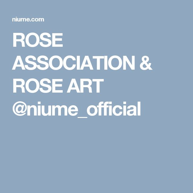 ROSE ASSOCIATION & ROSE ART @niume_official