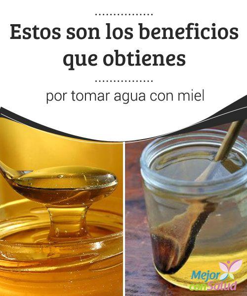 Estos son los beneficios que obtienes por tomar agua con miel  La miel es un alimento fabricado por las abejas a partir de la transformación del néctar de las flores y secreciones de partes vivas de las plantas.