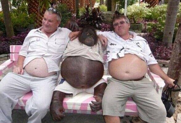 Amici felici con pance grasse immagini-divertenti.org