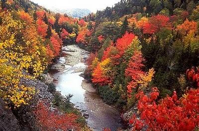 New Brunswick in autumn,