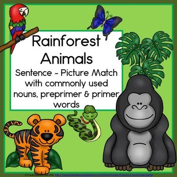 Students will be engaged in reading sight words with Rainforest Animals Sentence Picture Match. There are 12 sentences and pictures to match, featuring an anaconda, leaf cutter ant, gorilla, blue morpho butterfly, orangutan, panda, macaw, toucan, piranha, tiger and a red eyed tree frog. This packet has everything you need for a complete literacy center, including 2 vocabulary posters, 2 follow up worksheets, a leveled list of words used, and directions. TpT $