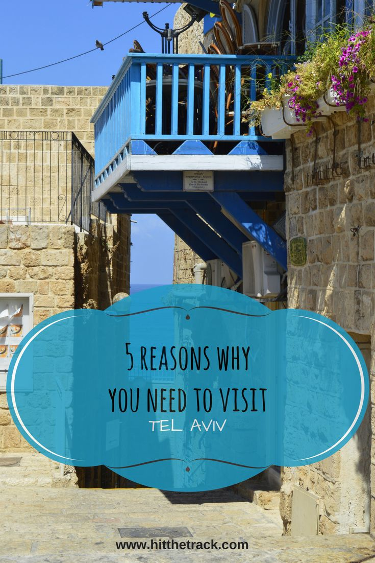 If you want to visit Tel Aviv during your trip to Israel, then this blog will give you all the reasons you need, to add this beautiful city on your list!