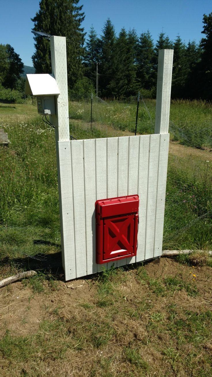 8 Best Automatic Chicken Coop Door Images On Pinterest