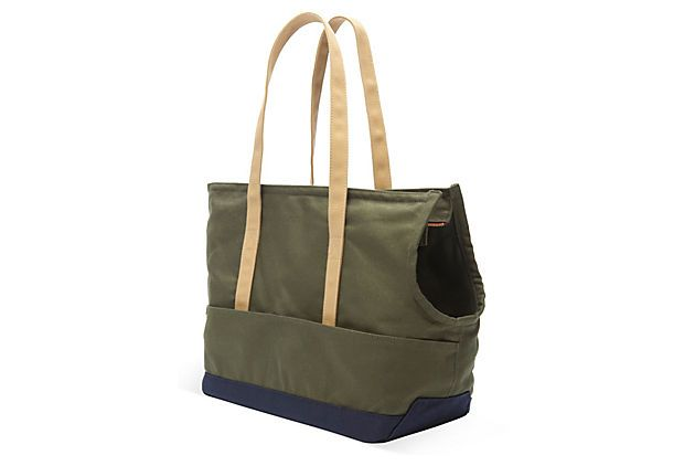 Canvas Pet Tote, Olive/Navy | Pets, Totes and Canvases