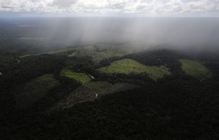"""Destruction of the Amazon is speeding up — just when the planet can least afford it - The Washington Post - Mankind has a death wish. These rainforests are ultra important to our environment, climate, as an oxygen source, etc - we """"dumb asses"""" are watching our future disappear!"""