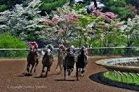 Keenland- that;s where Catie won betting on the horses