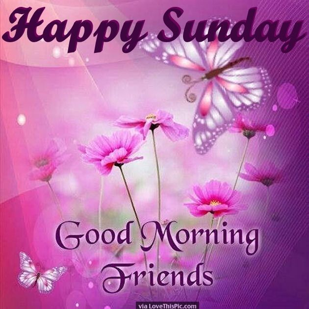 Good Morning Sunday Love : Best images about sunday blessings on pinterest blood