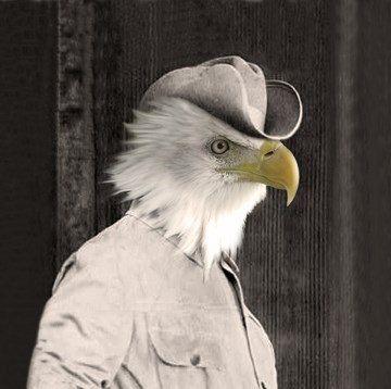 Шериф - Урожай Орел 5x7 печати - антропоморфные - Измененные фотография - Орел Арт - Цифровое искусство - Photo Collage - Причудливая - необычный подарок