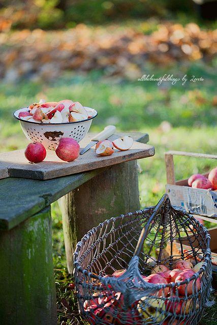 Autumn Countryside | Flickr: Intercambio de fotos