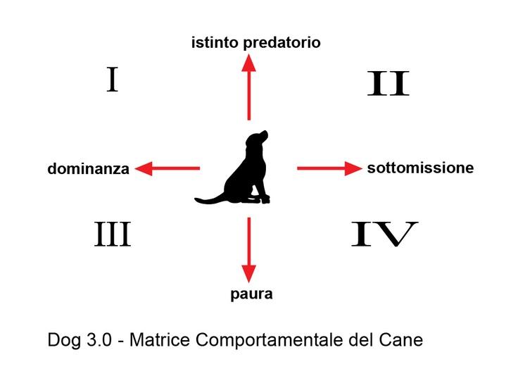 Per correggere l comportamento del cane dobbiamo determinare la zona comportamentale del cane ;)