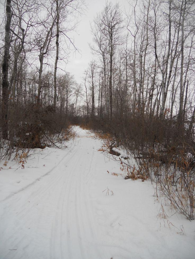 Winter Recreational Trail at Lucien Lake #lucienlake #winteratthelake #lakesideproperty #lakesideacreages #winterfun