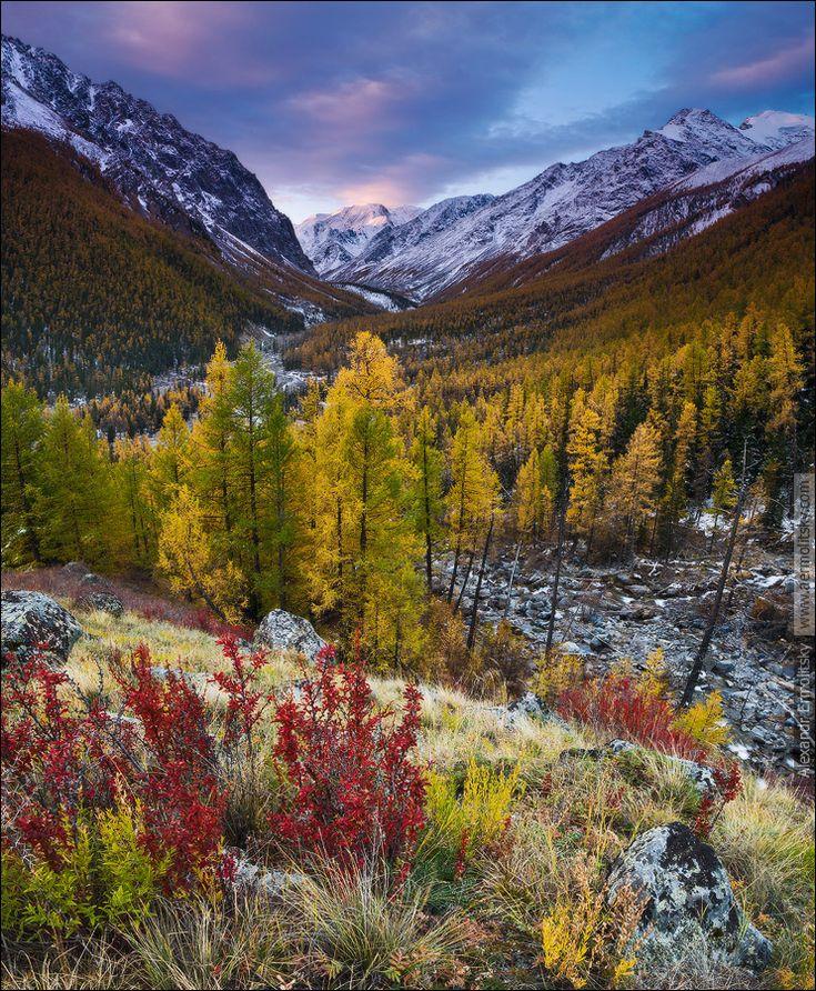 Россия, Республика Алтай, Северо-Чуйский хребет, слияние рек Каракабак и Мажой (Маашей), сентябрь 2012.