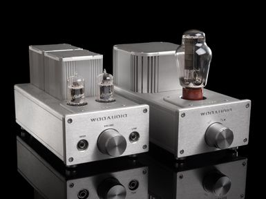 WooAudio WA6SE. One is a dedicated power tube, and one is a dedicated drive tube. ($1050)