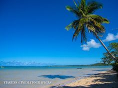 Boipeba - A Melhor Ilha do Brasil | Bahia - Viagens Cinematográficas