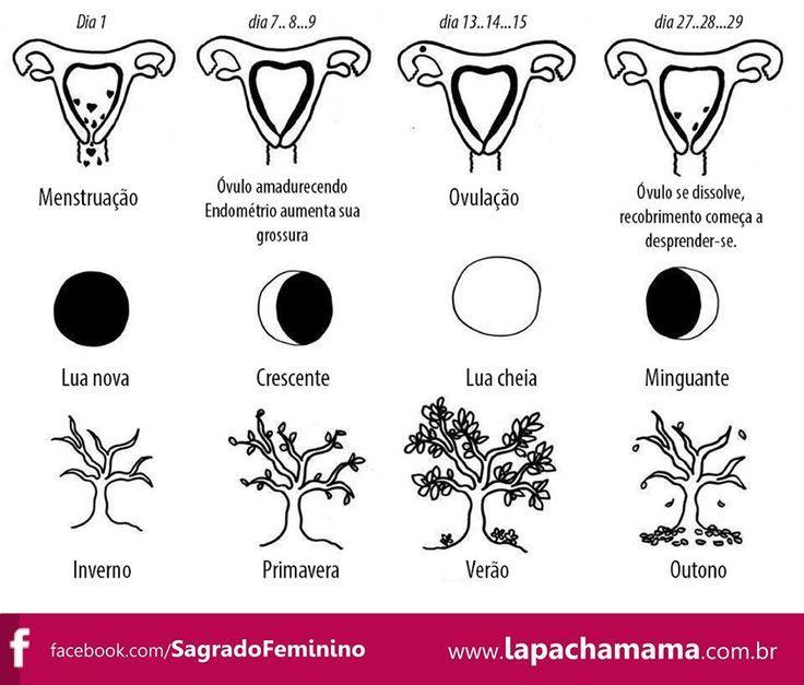 Pachamama, ciclos do sagrado feminino - Pesquisa Google