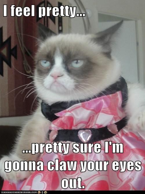 grumpy cat - mm yes I 'm sure most cats feel that way about clothes