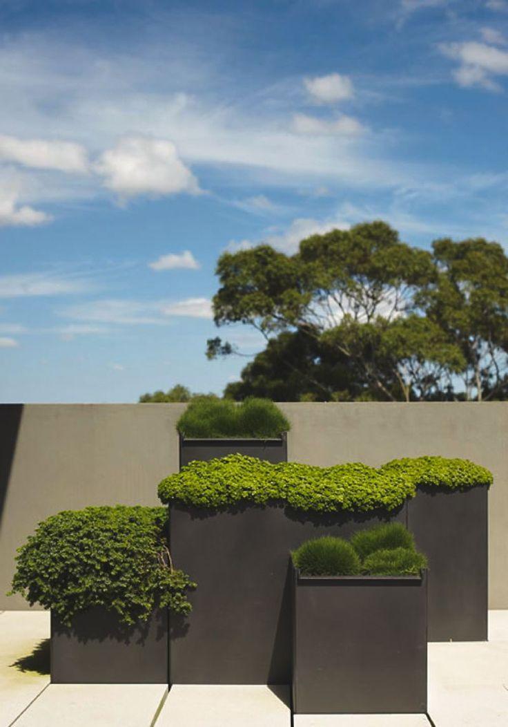 Oltre 25 idee originali per progettazione del giardino su for Idee giardino moderno
