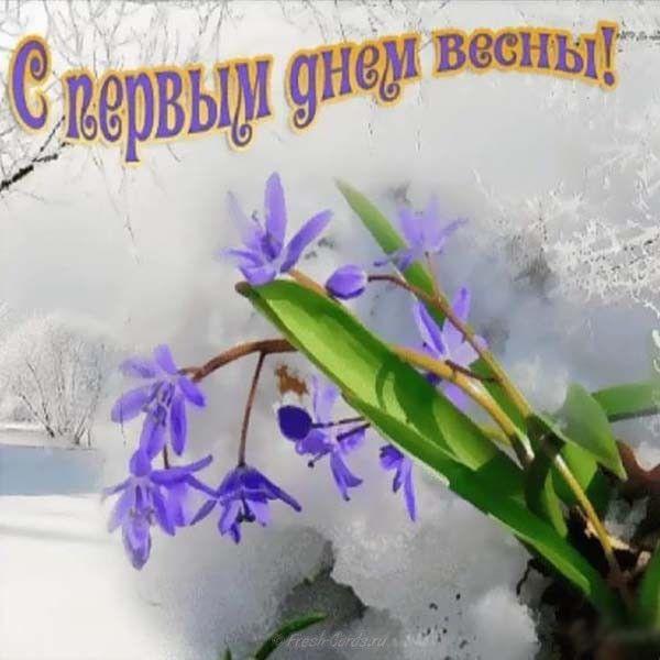 Цитаты афоризмы, открытки с 1 мартом 1 днем весны