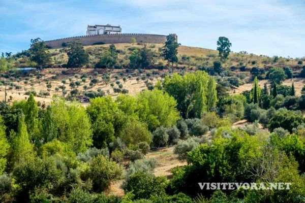 Arraiolos - visitar a vila dos tapetes e do castelo circular | VisitEvora