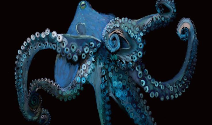 Blue Octopus Card by BlueRingOctopodes on Etsy https://www.etsy.com/listing/484512942/blue-octopus-card