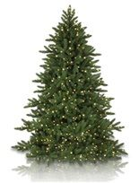 Artificial Christmas Trees, Lights & Christmas Ornaments - Balsam Hill Castle Peak Pine Tree 9'tall x 6' wide, $850