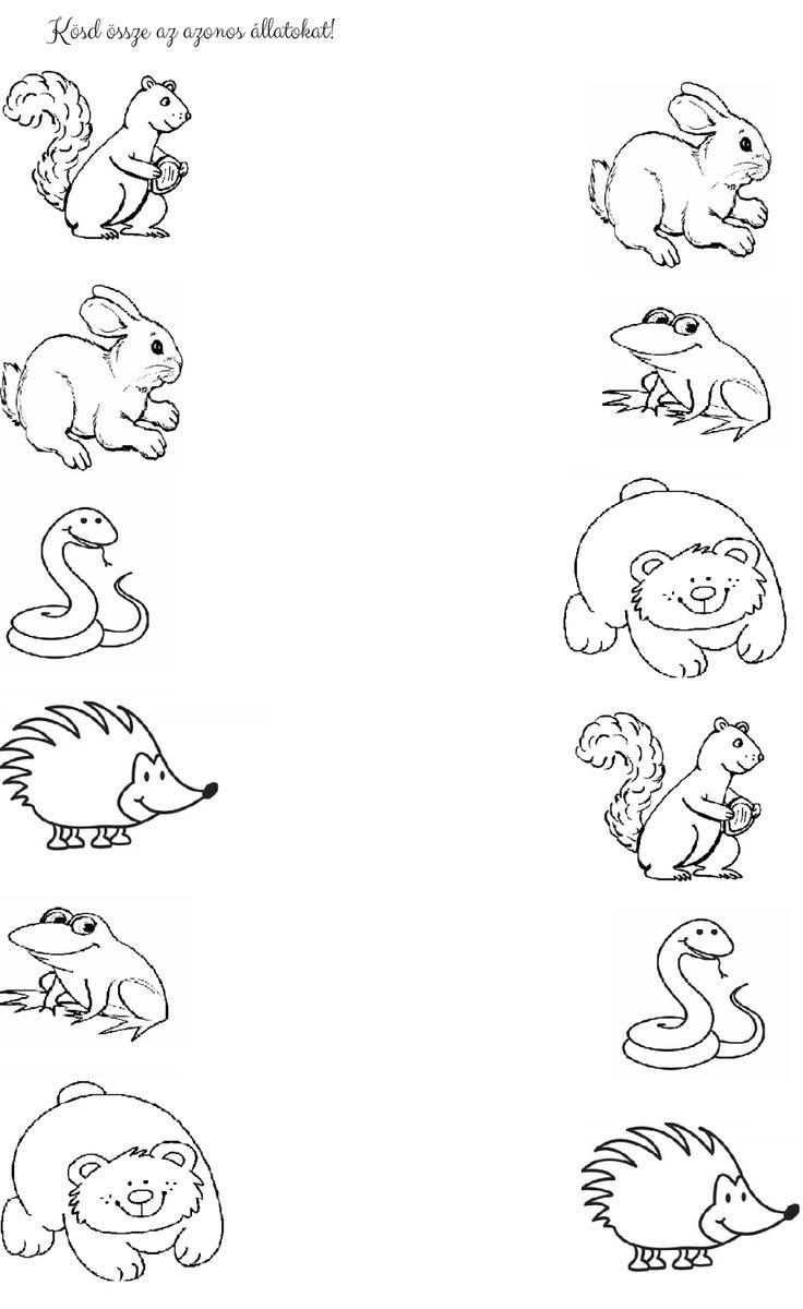 (2014-11) Find de samme dyr