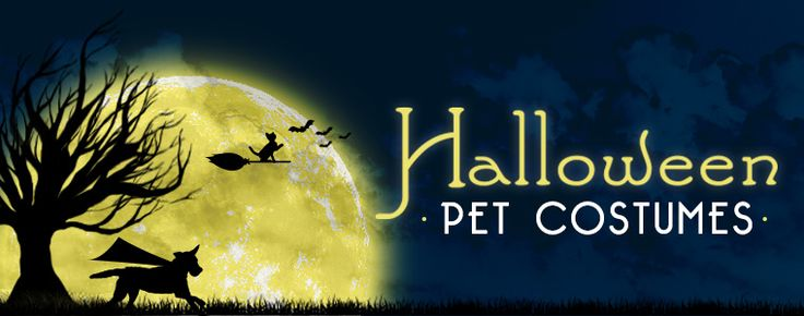 Stock up on the cutest and funniest #pet #Halloween costumes!