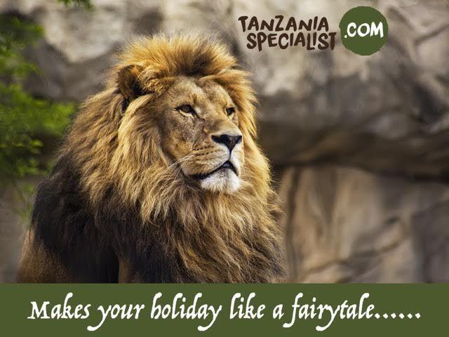 Find the best wildlife safaris tour destination in Tanzania. Visit tanzaniaspecialist.com