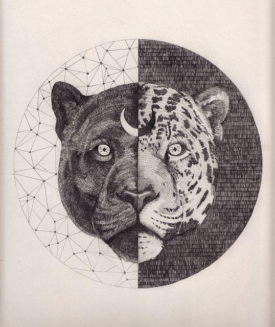 Leopard  420 x 297 mm, graphite on paper  Peter Carrington