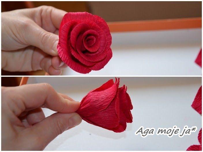 Jak Zrobic Roze Z Krepiny Roze Z Krepy Kurs Small Gifts Handmade Floral