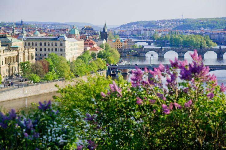 Prague view. Letna park