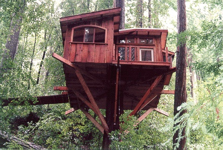 18 Best Santa Cruz Tree House Images On Pinterest Santa