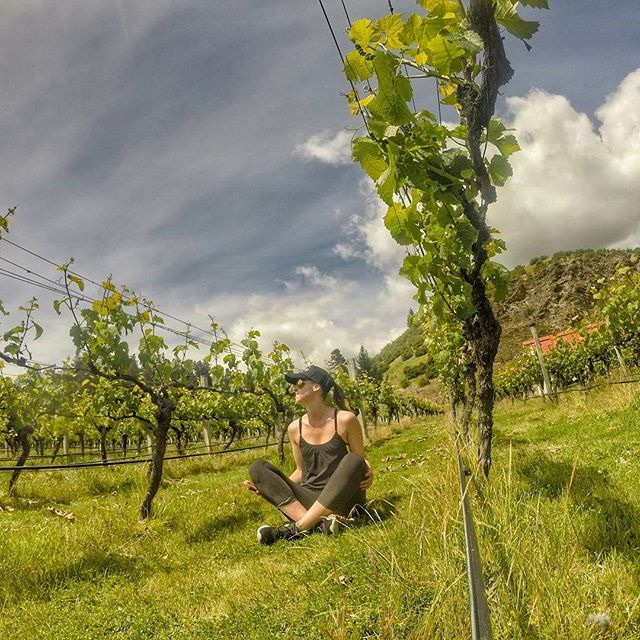 Last day off before back to work, denial made easier by sunshine and a winery! #newzealandvacations #queenstown #optoutside #outdoorculture #queenstownnz #queenstownlive #queenstownholidays #wanderlust #travelbug #travelblogger #irishabroad #purenewzealand #womenwhohike #womenwhoexplore #capturenz #kiwipics #gottalovenz #backpacker #nzmustdo #nzmustsee #newzealand #arrowtown #fitspiration #runshots #gopro #lakewakatipu #newzealandguide #destinationnz #newzealandfinds